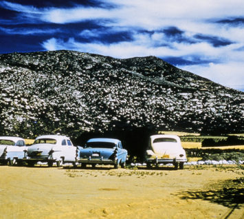 Mt Kuchumaa and Cars