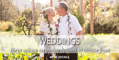 weddings 396x200_2