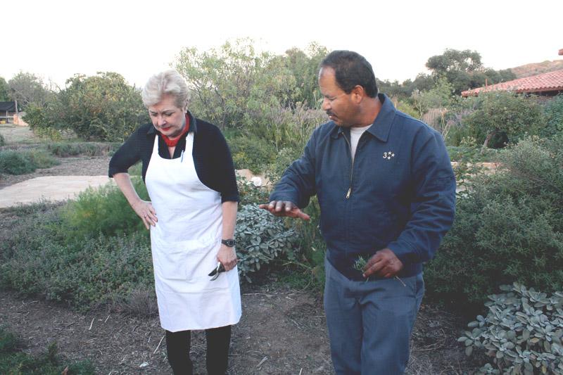 cooking class, organic garden, patricia wells, cooking school, health retreat, health spa, destination spa
