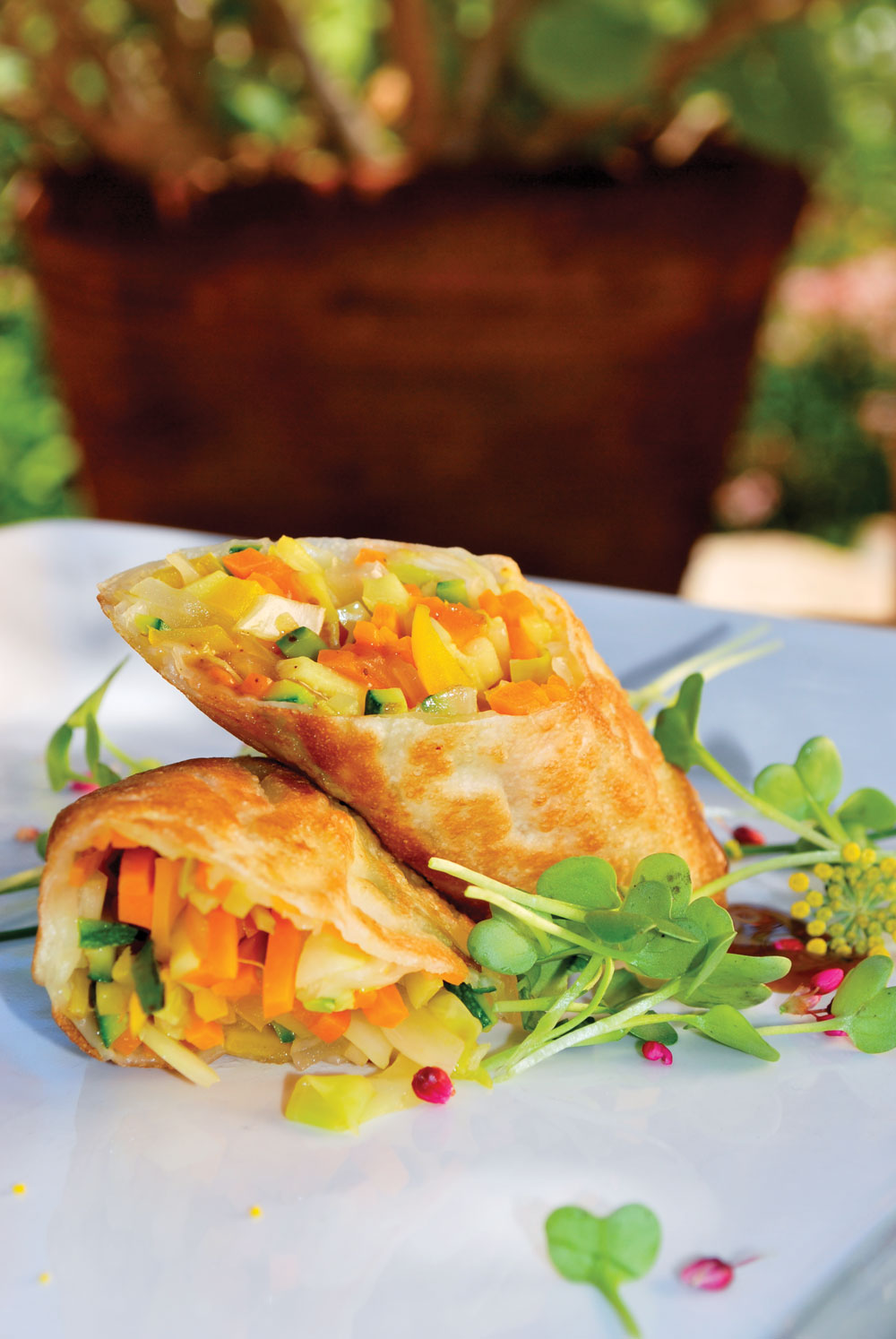 how to make egg rolls, healthy food, healthy recipes, egg roll recipe, health retreat, health spa, destination spa