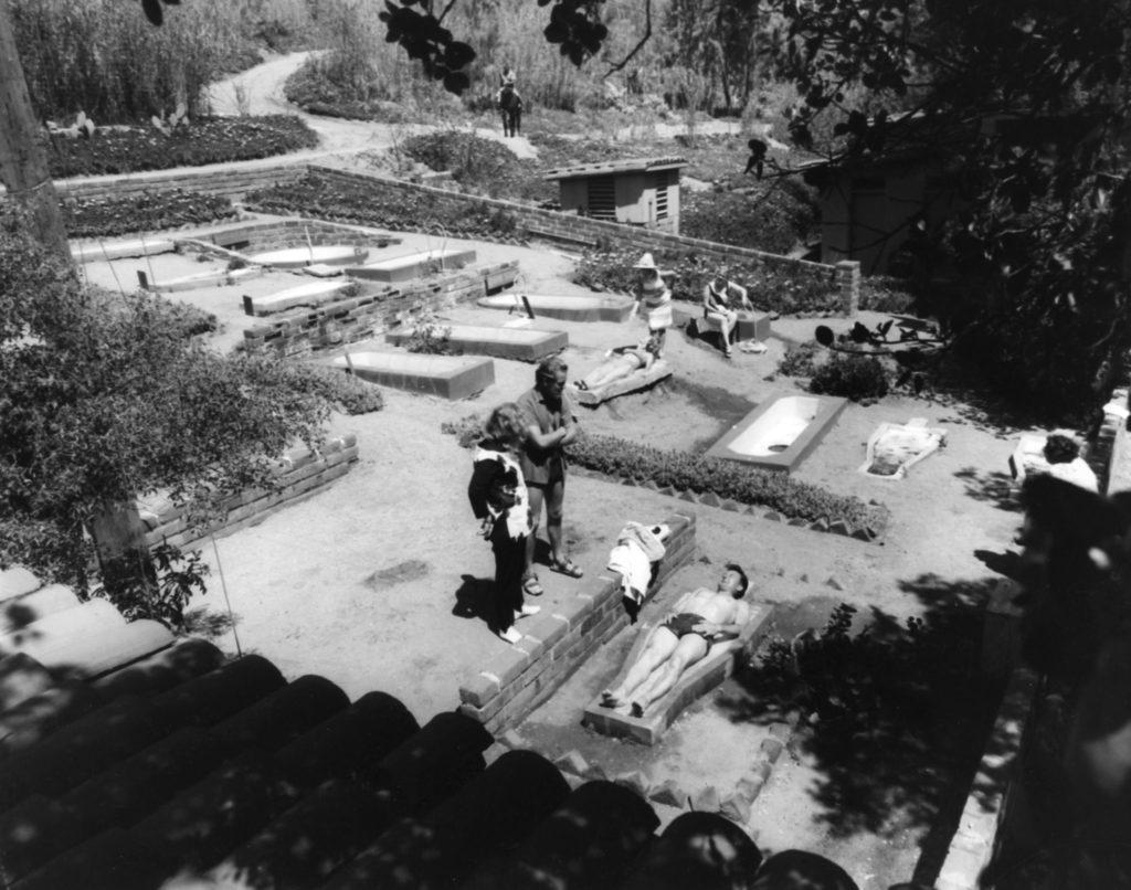 Origins of the Ranch, Part IX