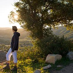 Alex's Oak Trail