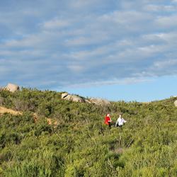 Coyote Hike