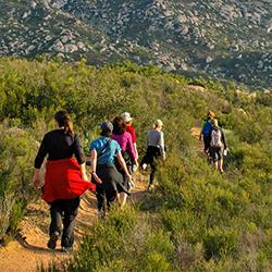 Seven Mile Mountain Breakfast Hike