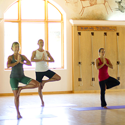 Yoga/Fundamentals: Level One