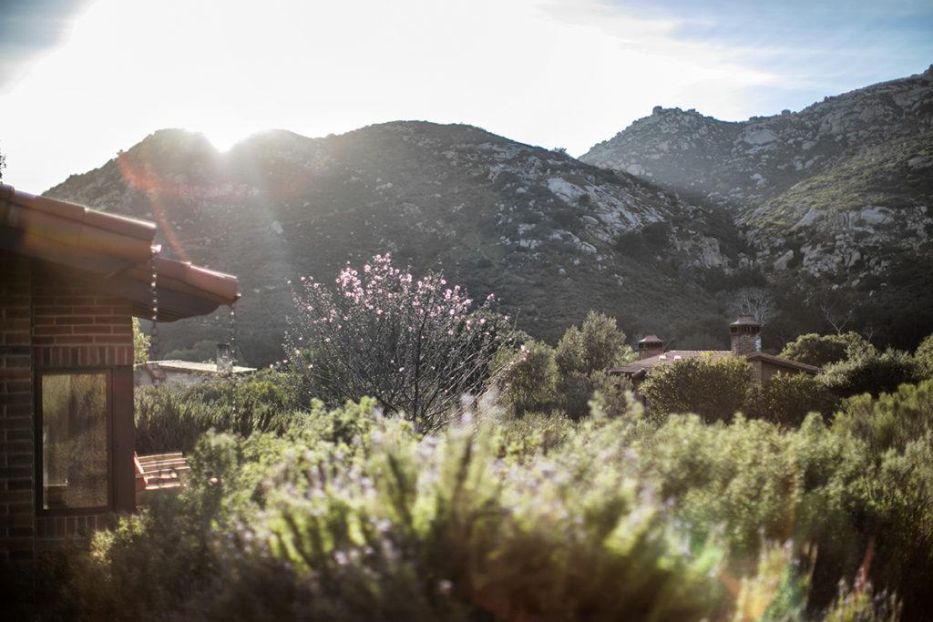 February at Rancho La Puerta