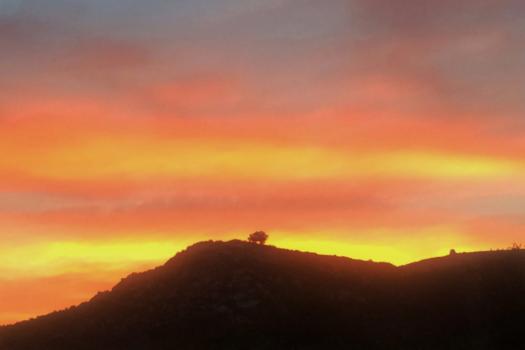 January at Rancho La Puerta