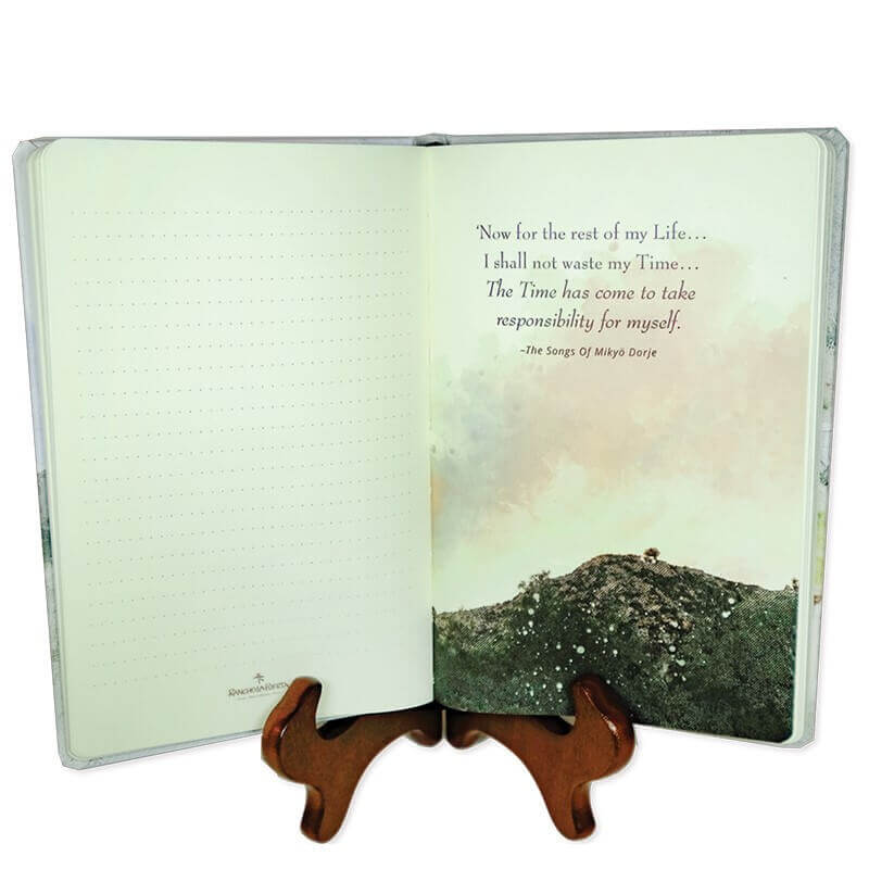 Writing a Daily Gratitude Journal