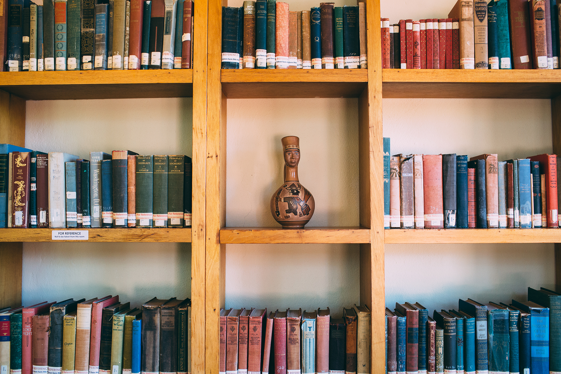 Looking for Erica in the Rare Books Room by Jill Bronfman