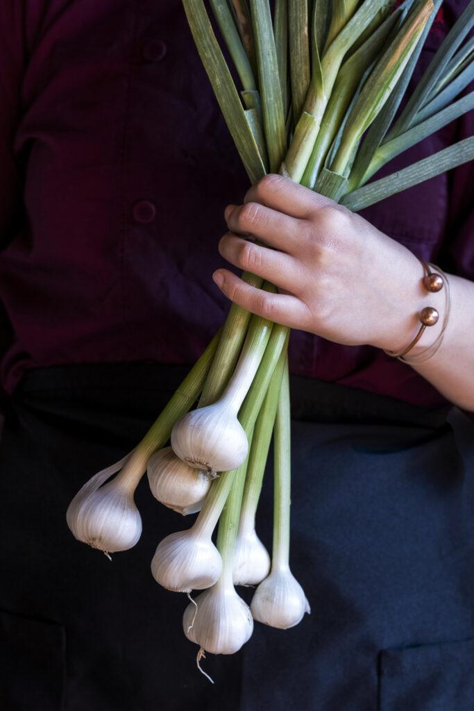 Fresh from Our Farm: Green Garlic